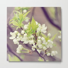 Snowberry Metal Print