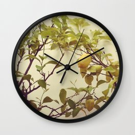 Lemon Tree Wall Clock