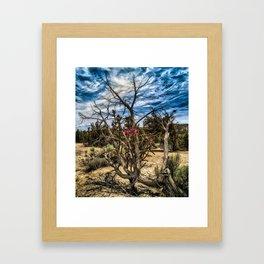 Cactus Flower Among the Dead Wood Framed Art Print