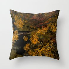 Autumn Leaves and Stream Throw Pillow