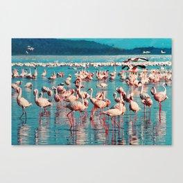 Pink flamingos Canvas Print