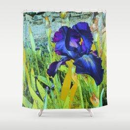 Iris Harmonies Shower Curtain