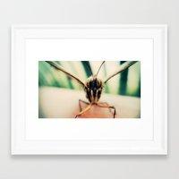 moth Framed Art Prints featuring moth by Sookie Endo