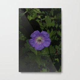 Lost purple Metal Print