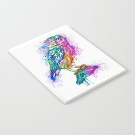 Colorful Owl Notebook