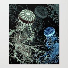 Chrysaora hysoscella (Dark) Canvas Print