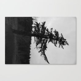 Character is like a tree Canvas Print