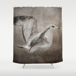 Dance of the Lone Gull Shower Curtain