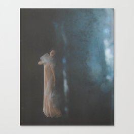 Light Rain Canvas Print