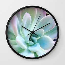 Soft Succulent Wall Clock