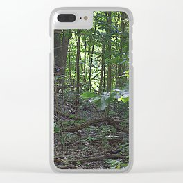 Path Shawnee National Forest Clear iPhone Case