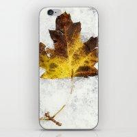 frozen iPhone & iPod Skins featuring frozen by Bonnie Jakobsen-Martin