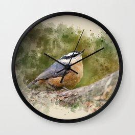 Nuthatch Watercolor Art Wall Clock