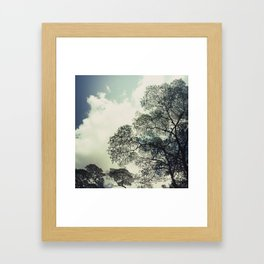 patterns of the tree Framed Art Print