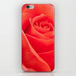 Pretty peach iPhone Skin