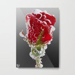 Rose Bubbles Metal Print