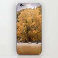 battlefield iPhone & iPod Skins featuring Morning on the Battlefield by Jai Johnson