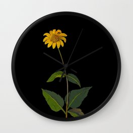 Rudbeckia Trifoliata Mary Delany British Botanical Paper Flower Collage Delicate Flowers Wall Clock