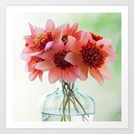 Dahlias in a clear glass vase Art Print