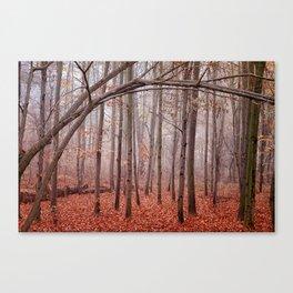 Red twilight Canvas Print