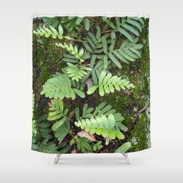 Moss and Fern Shower Curtain