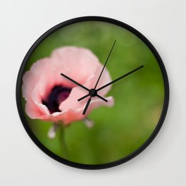 Peachy poppy Wall Clock
