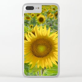 Sunflower. Summer dreams Clear iPhone Case