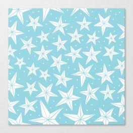 Snow Flakes Canvas Print
