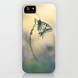 King of butterflies iPhone Case