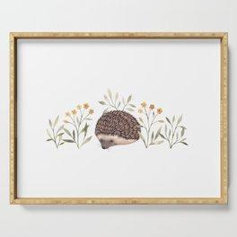 Little Hedgehog Serving Tray