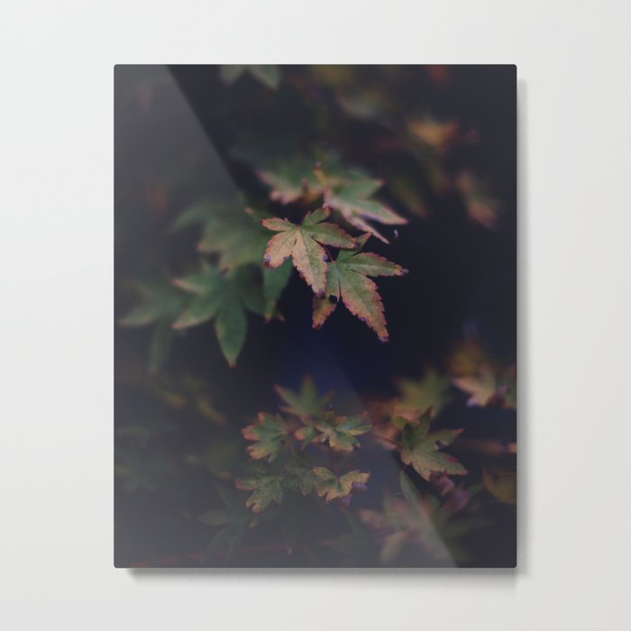 Hints of Autumn Metal Print