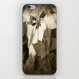 Mixed Color Poinsettias 2 Antiqued iPhone Skin