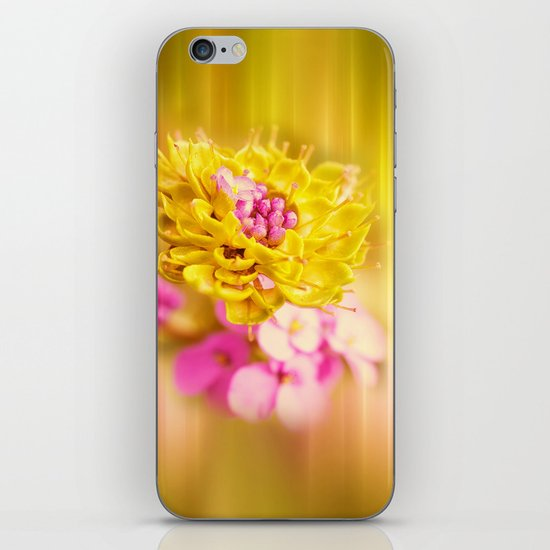 The Sound of Light and Color iPhone & iPod Skin