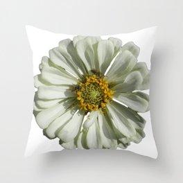 Zinnia Bees Throw Pillow