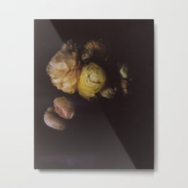 Ranunculus Still Life Metal Print