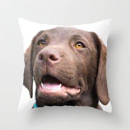 Chocolate Puppy Throw Pillow