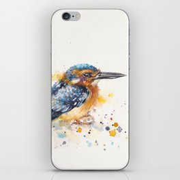 Kingfisher Lane iPhone Skin