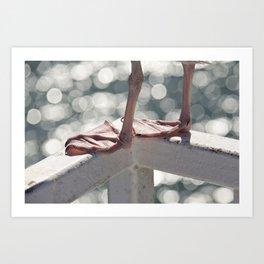 Seagull Legs Art Print