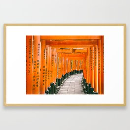 Fushimi Inari Shrine Framed Art Print