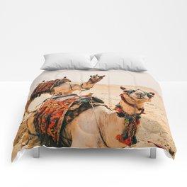 Camels Comforters