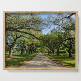 The Avenue of Oaks Serving Tray