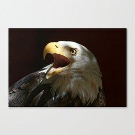 Bald Eagle | Call of the Wild | Eagles| Wildife | Eagle Art | Eagle Photography Canvas Print