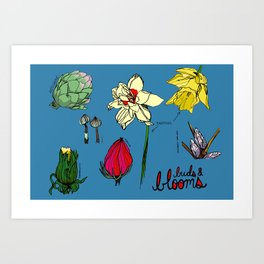 Buds and Blooms Identification Print Art Print