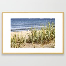 Sanddune - Seagrass - Baltic Sea - Island Ruegen Framed Art Print