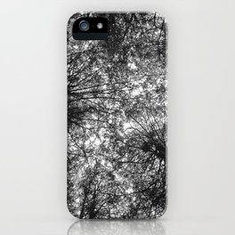 The Dark Forest Path iPhone Case