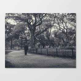 The stranger in the Park Canvas Print