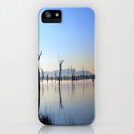 Dancing Shadows iPhone Case