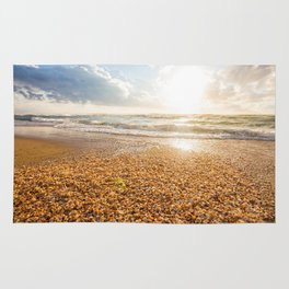 Sunset Cockleshell Rug