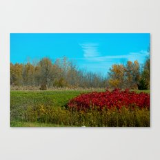 Winter is quickly approching. Canvas Print