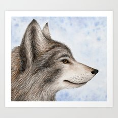 Eastern Wolf Art Print